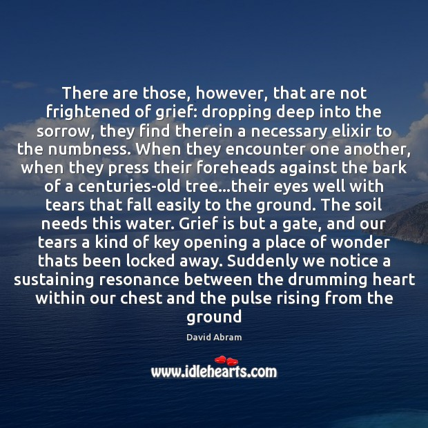 There are those, however, that are not frightened of grief: dropping deep Image