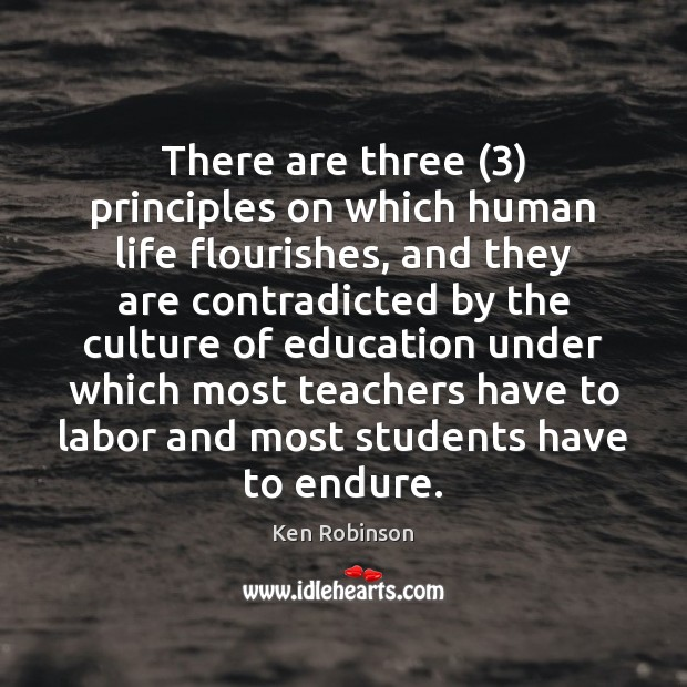 There are three (3) principles on which human life flourishes, and they are Ken Robinson Picture Quote