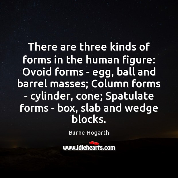There are three kinds of forms in the human figure: Ovoid forms Burne Hogarth Picture Quote