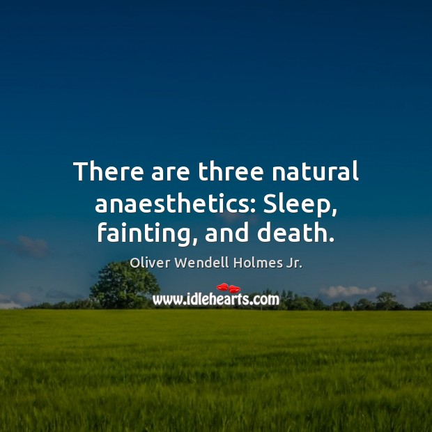 There are three natural anaesthetics: Sleep, fainting, and death. Oliver Wendell Holmes Jr. Picture Quote