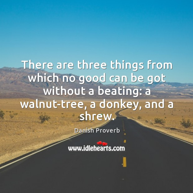 There are three things from which no good can be got without a beating Danish Proverbs Image