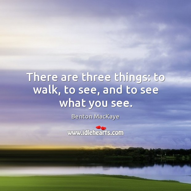 Image, There are three things: to walk, to see, and to see what you see.