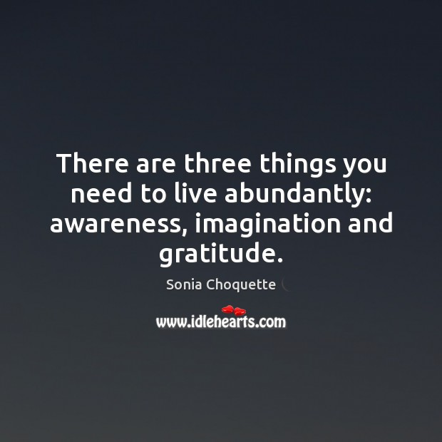 Image, There are three things you need to live abundantly: awareness, imagination and gratitude.
