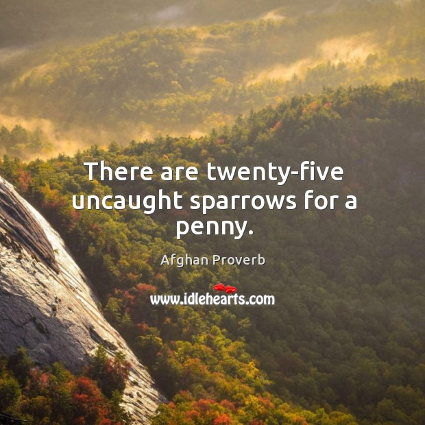 There are twenty-five uncaught sparrows for a penny. Afghan Proverbs Image