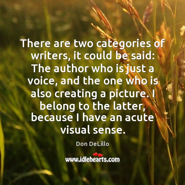 There are two categories of writers, it could be said: The author Don DeLillo Picture Quote