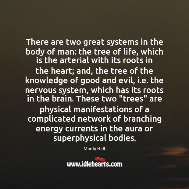 There are two great systems in the body of man: the tree Image