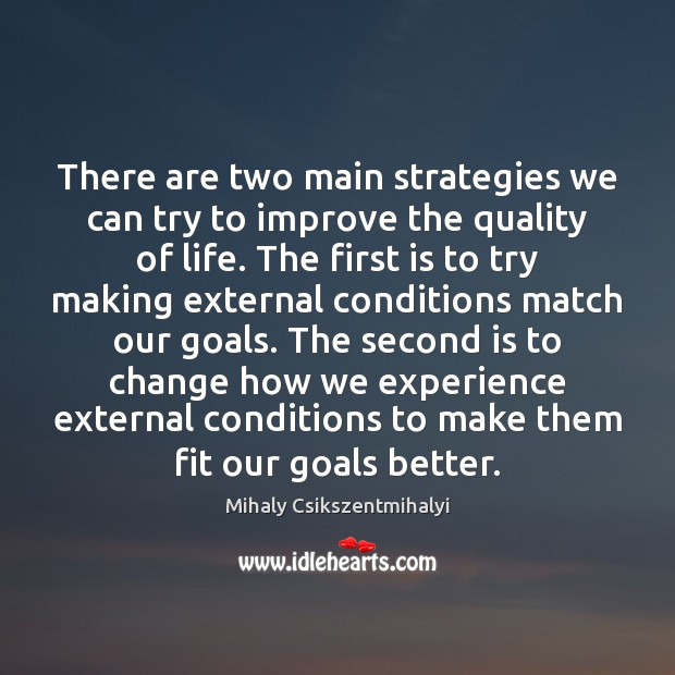 There are two main strategies we can try to improve the quality Mihaly Csikszentmihalyi Picture Quote