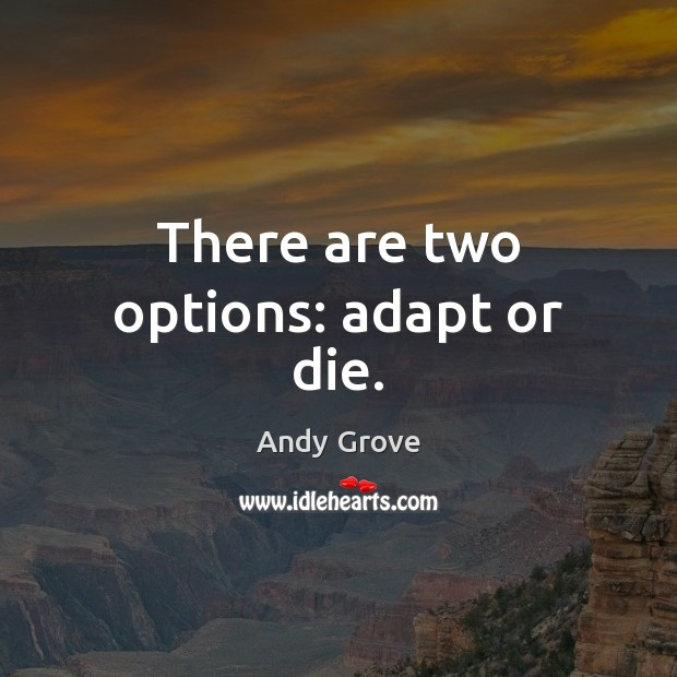 There are two options: adapt or die. Image