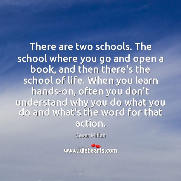 There are two schools. The school where you go and open a Image