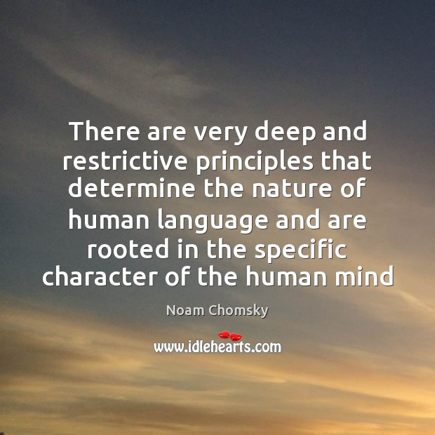 There are very deep and restrictive principles that determine the nature of Image