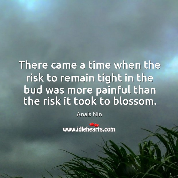 There came a time when the risk to remain tight in the bud was more painful than the risk it took to blossom. Image