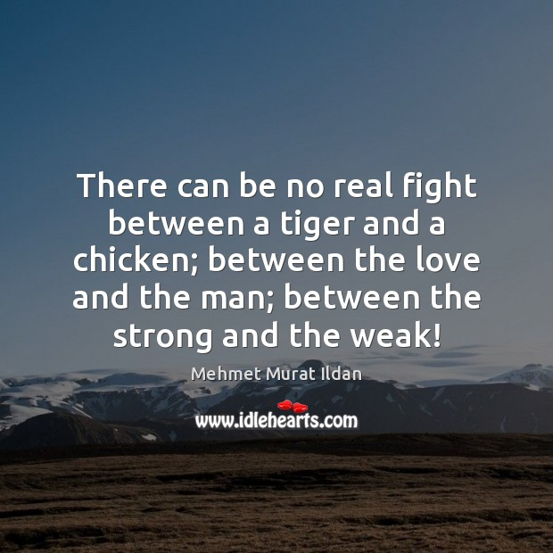 There can be no real fight between a tiger and a chicken; Image