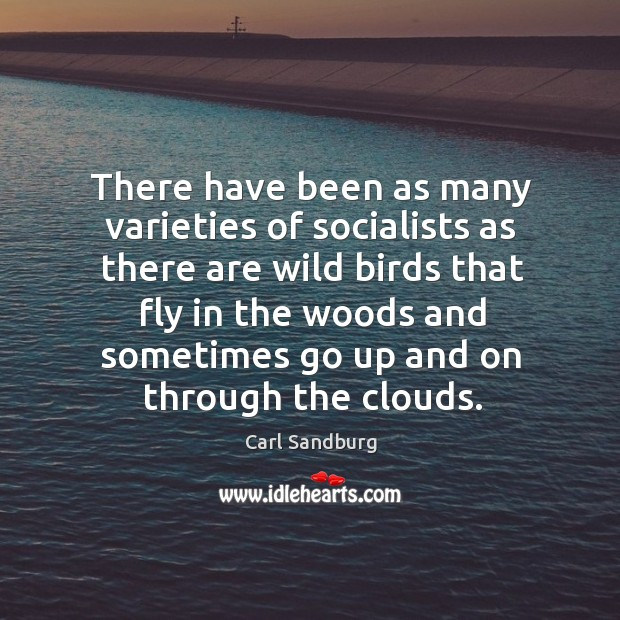 There have been as many varieties of socialists as there are wild birds that fly in Image