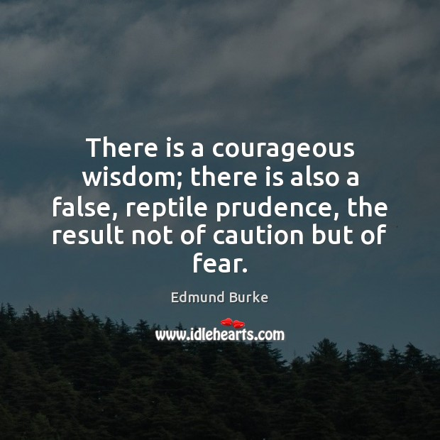 There is a courageous wisdom; there is also a false, reptile prudence, Edmund Burke Picture Quote