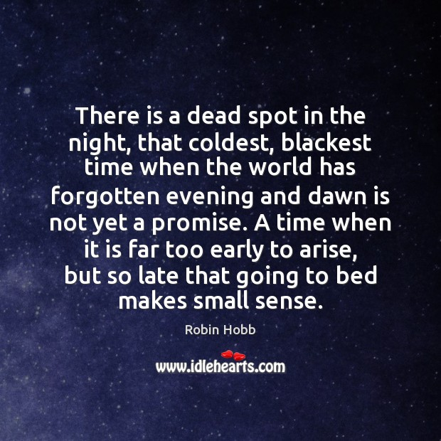 There is a dead spot in the night, that coldest, blackest time Robin Hobb Picture Quote