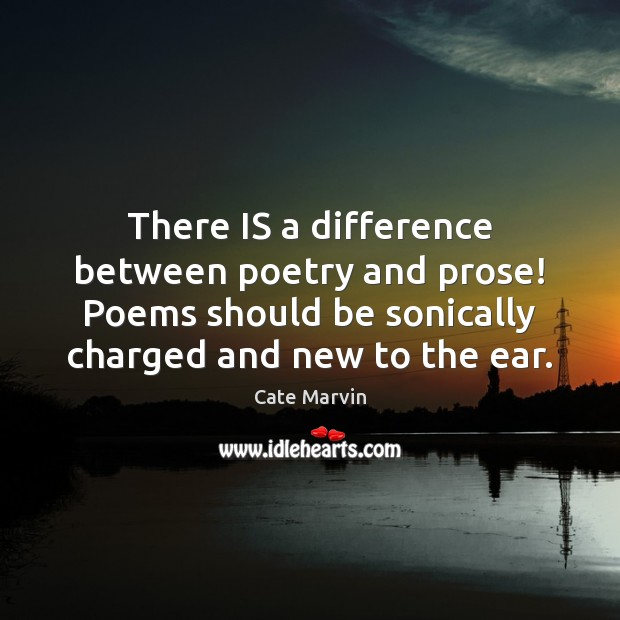 There IS a difference between poetry and prose! Poems should be sonically Cate Marvin Picture Quote