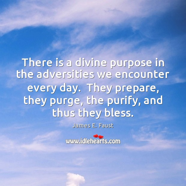 There is a divine purpose in the adversities we encounter every day. James E. Faust Picture Quote