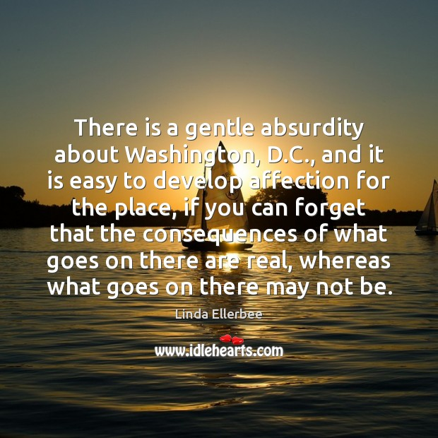 Image, There is a gentle absurdity about Washington, D.C., and it is