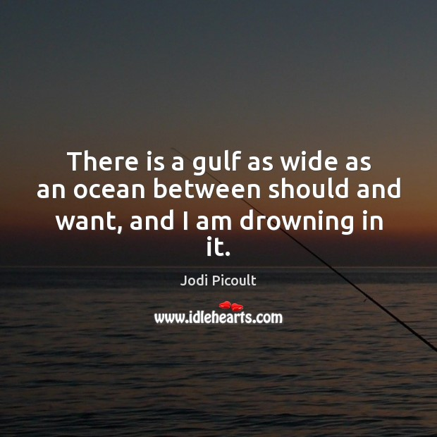There is a gulf as wide as an ocean between should and want, and I am drowning in it. Image