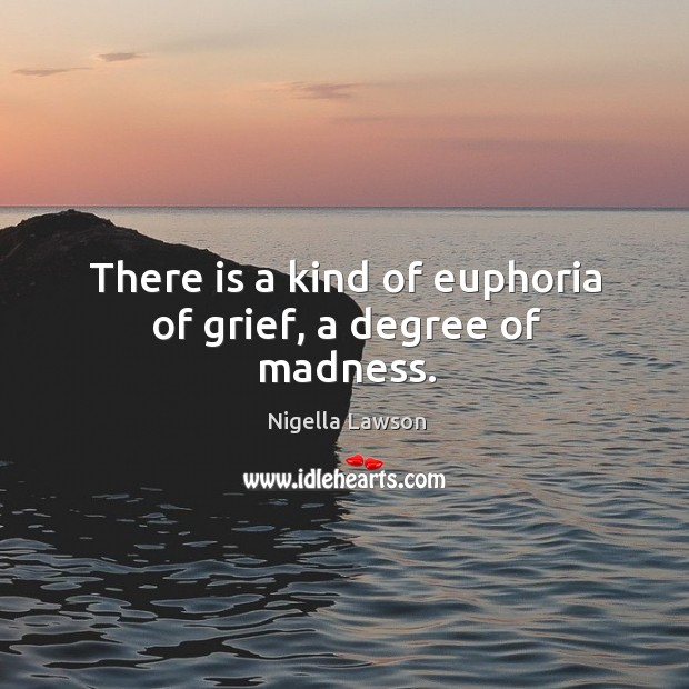 There is a kind of euphoria of grief, a degree of madness. Image