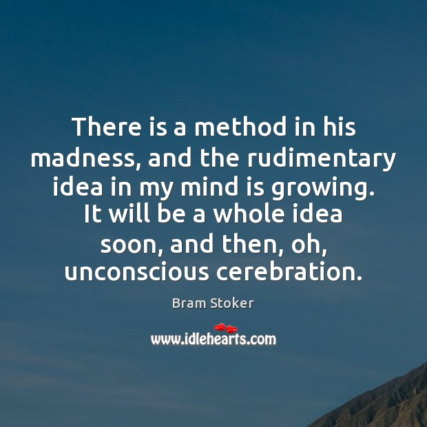 There is a method in his madness, and the rudimentary idea in Image
