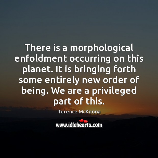 There is a morphological enfoldment occurring on this planet. It is bringing Image