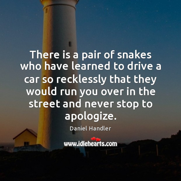 Image, There is a pair of snakes who have learned to drive a
