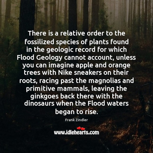 There is a relative order to the fossilized species of plants found Image