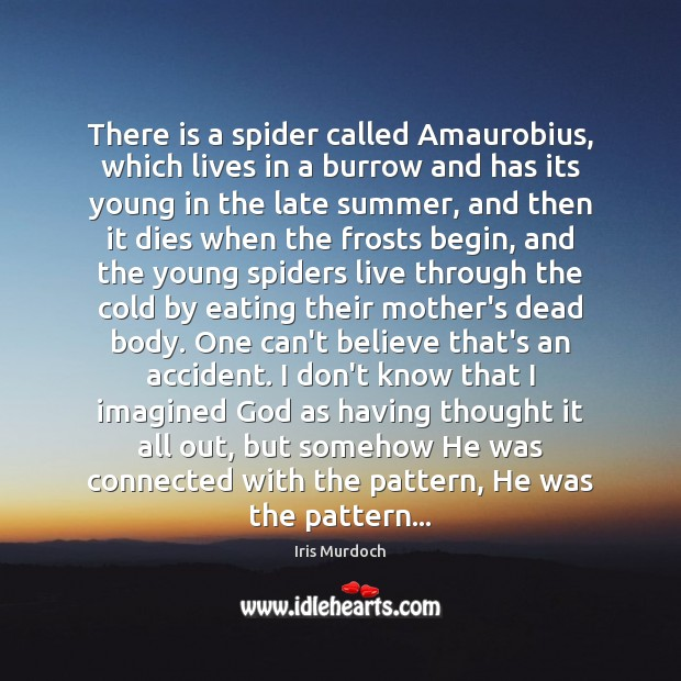 There is a spider called Amaurobius, which lives in a burrow and Image