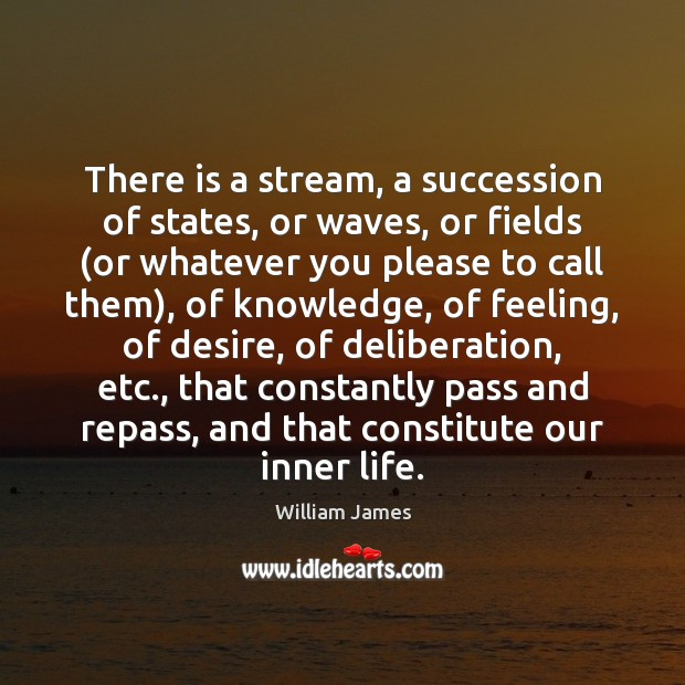 There is a stream, a succession of states, or waves, or fields ( William James Picture Quote