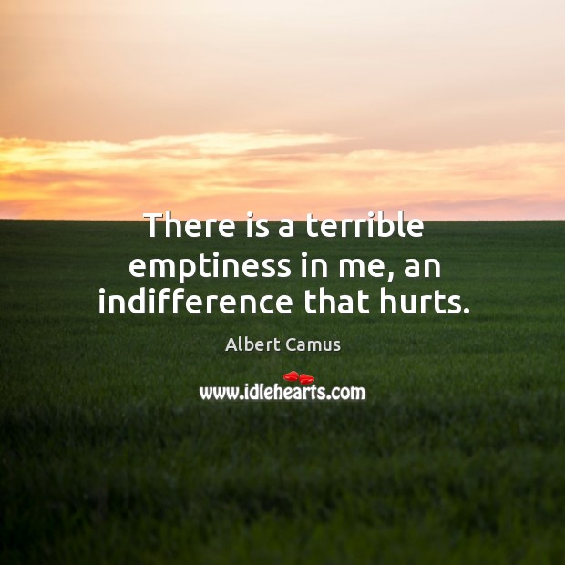 Image, There is a terrible emptiness in me, an indifference that hurts.