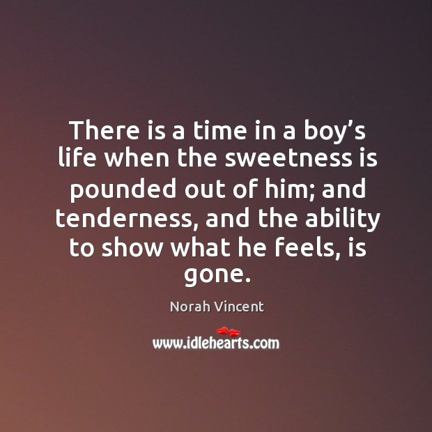 There is a time in a boy's life when the sweetness Norah Vincent Picture Quote