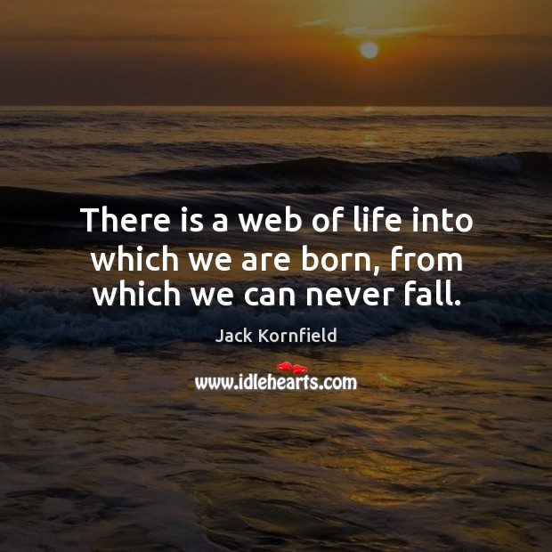 Image, There is a web of life into which we are born, from which we can never fall.