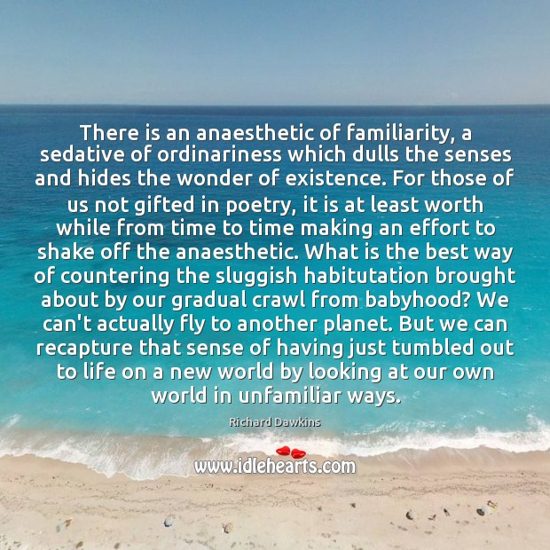 Image, There is an anaesthetic of familiarity, a sedative of ordinariness which dulls
