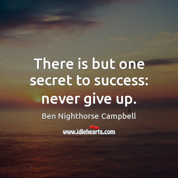 Image, There is but one secret to success: never give up.