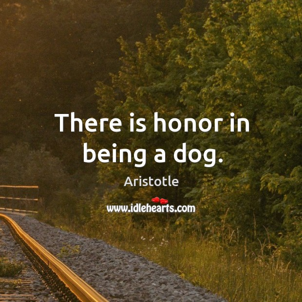 Image, There is honor in being a dog.