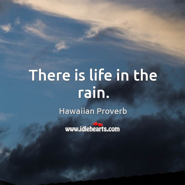 There is life in the rain. Hawaiian Proverbs Image