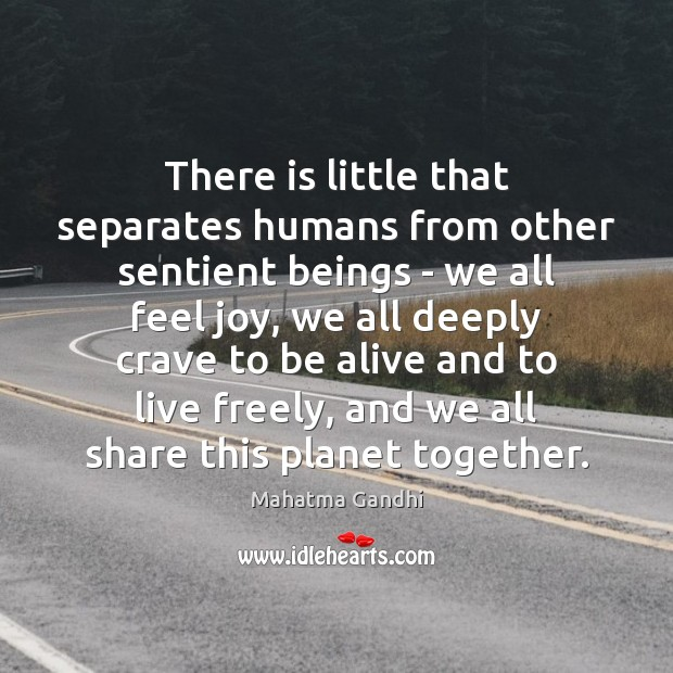There is little that separates humans from other sentient beings – we Mahatma Gandhi Picture Quote