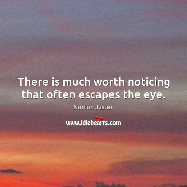 Image, There is much worth noticing that often escapes the eye.