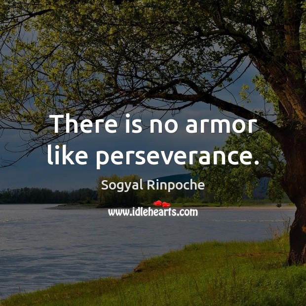 There is no armor like perseverance. Sogyal Rinpoche Picture Quote