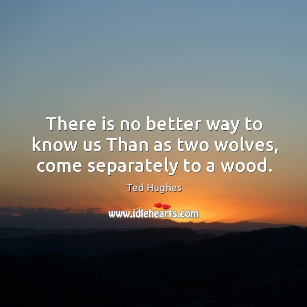 Image, There is no better way to know us Than as two wolves, come separately to a wood.