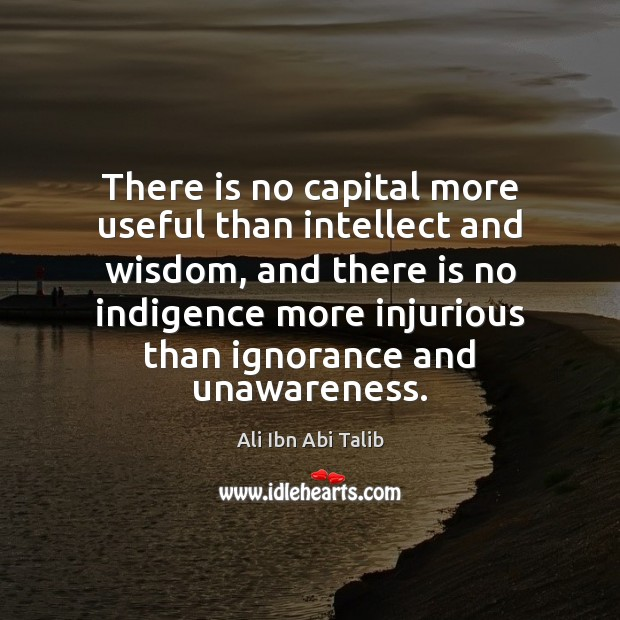 There is no capital more useful than intellect and wisdom, and there Ali Ibn Abi Talib Picture Quote