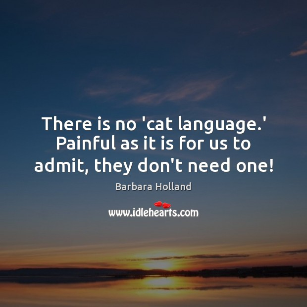 There is no 'cat language.' Painful as it is for us to admit, they don't need one! Image