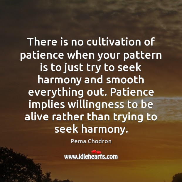 Image, There is no cultivation of patience when your pattern is to just
