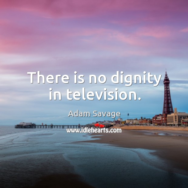Image, There is no dignity in television.