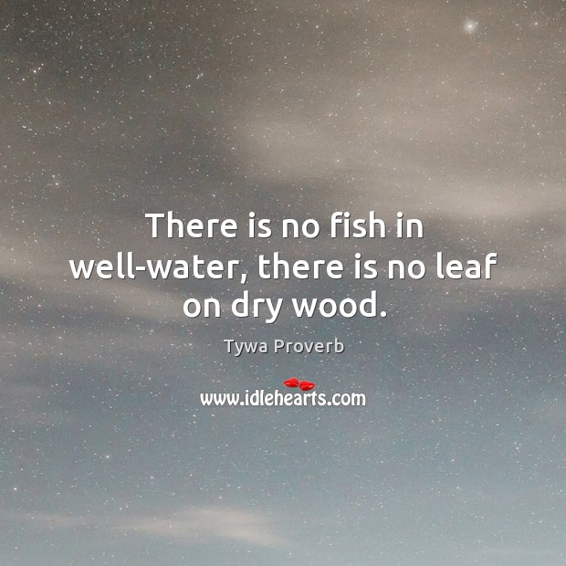 There is no fish in well-water, there is no leaf on dry wood. Tywa Proverbs Image