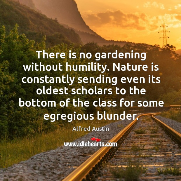 There is no gardening without humility. Nature is constantly sending even its oldest scholars to the bottom of the class for some egregious blunder. Image