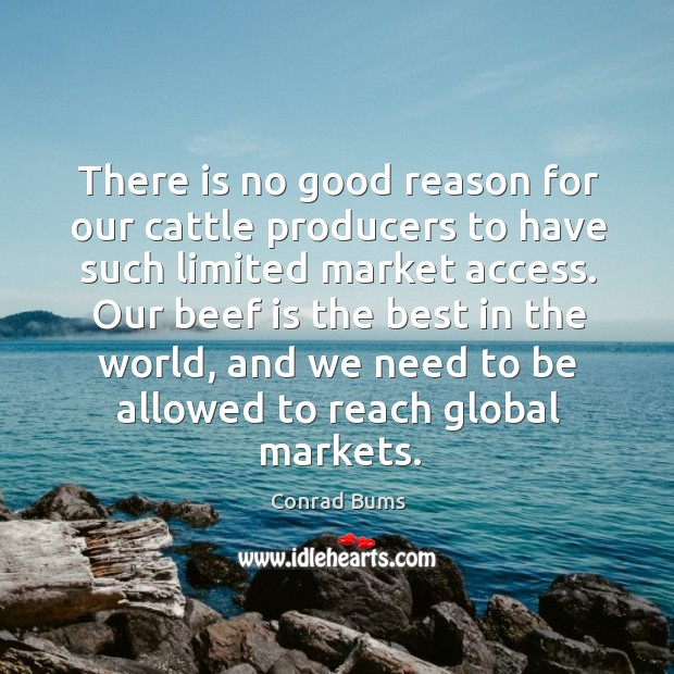 There is no good reason for our cattle producers to have such limited market access. Image