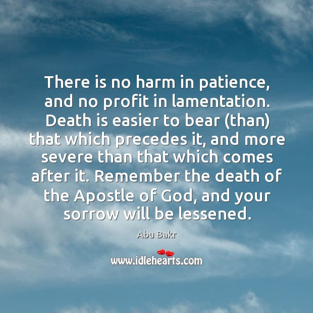 Image, There is no harm in patience, and no profit in lamentation.