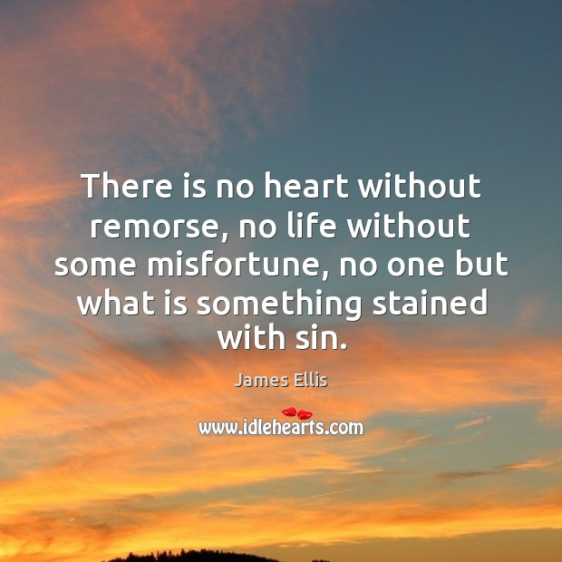 There is no heart without remorse, no life without some misfortune, no Image